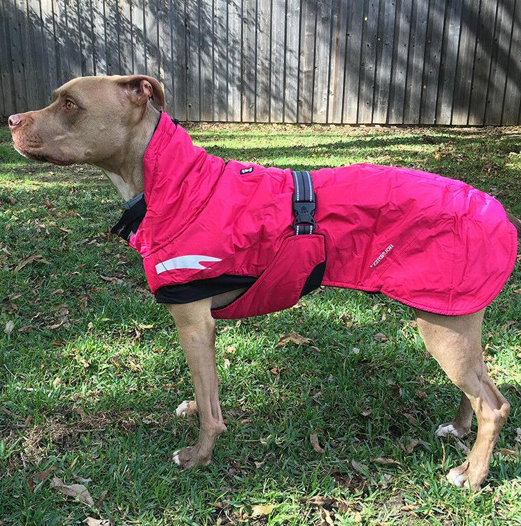 summit parka pet dog coat waterproof winter