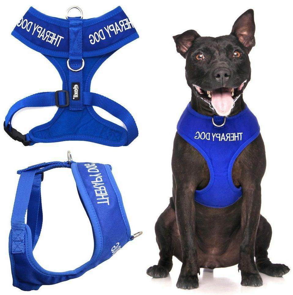 therapy dog blue non pull waterproof padded
