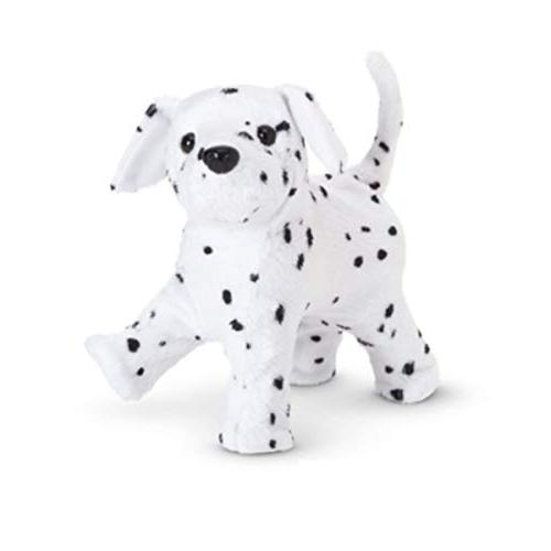 American Dalmation with 2014