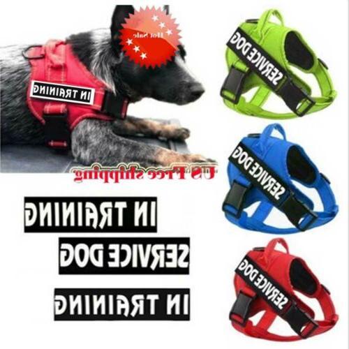 US Pets Dog Strap Pet Reflective Walking Sale #