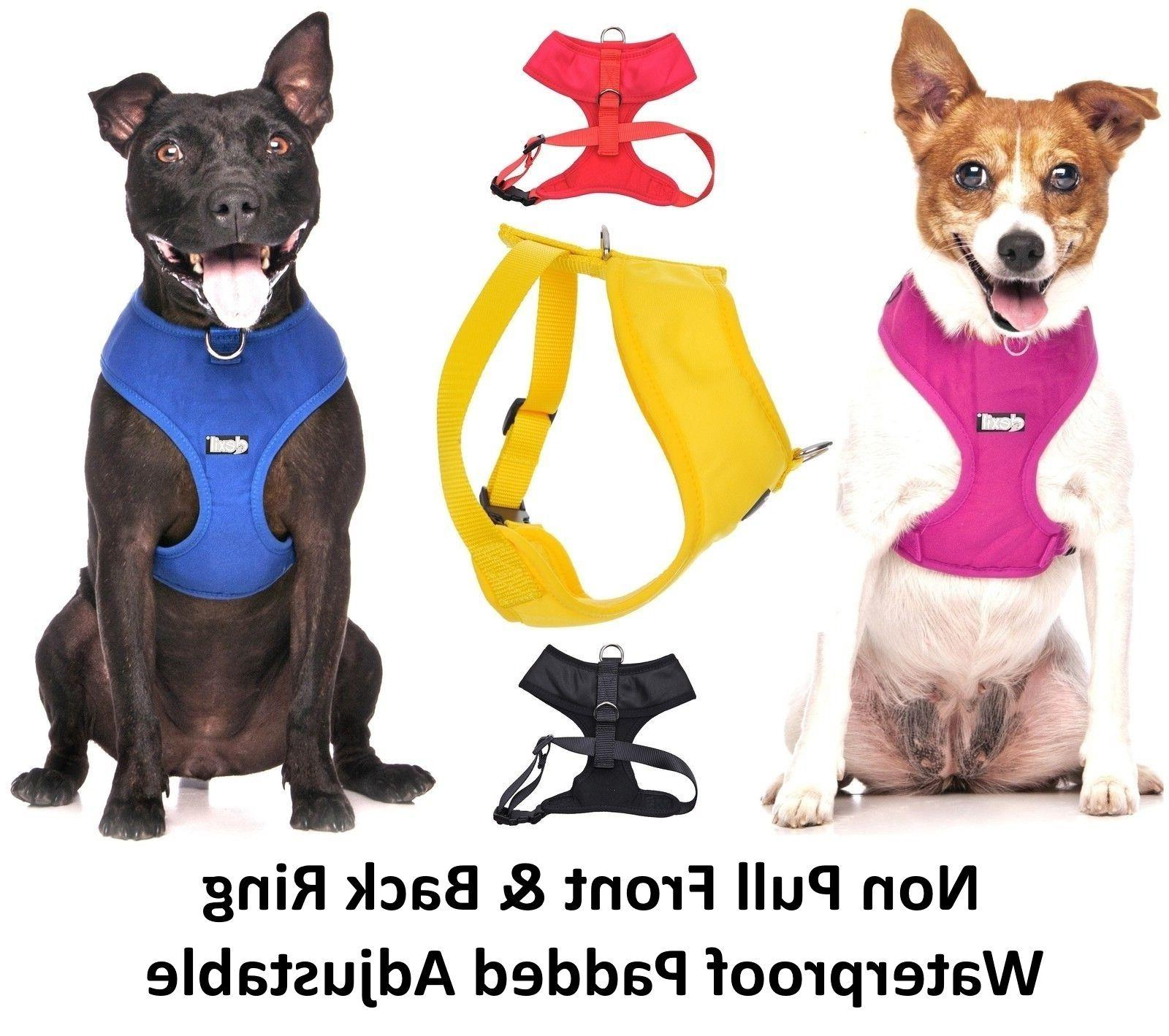 THERAPY Pull Waterproof Vest Harness Back Ring