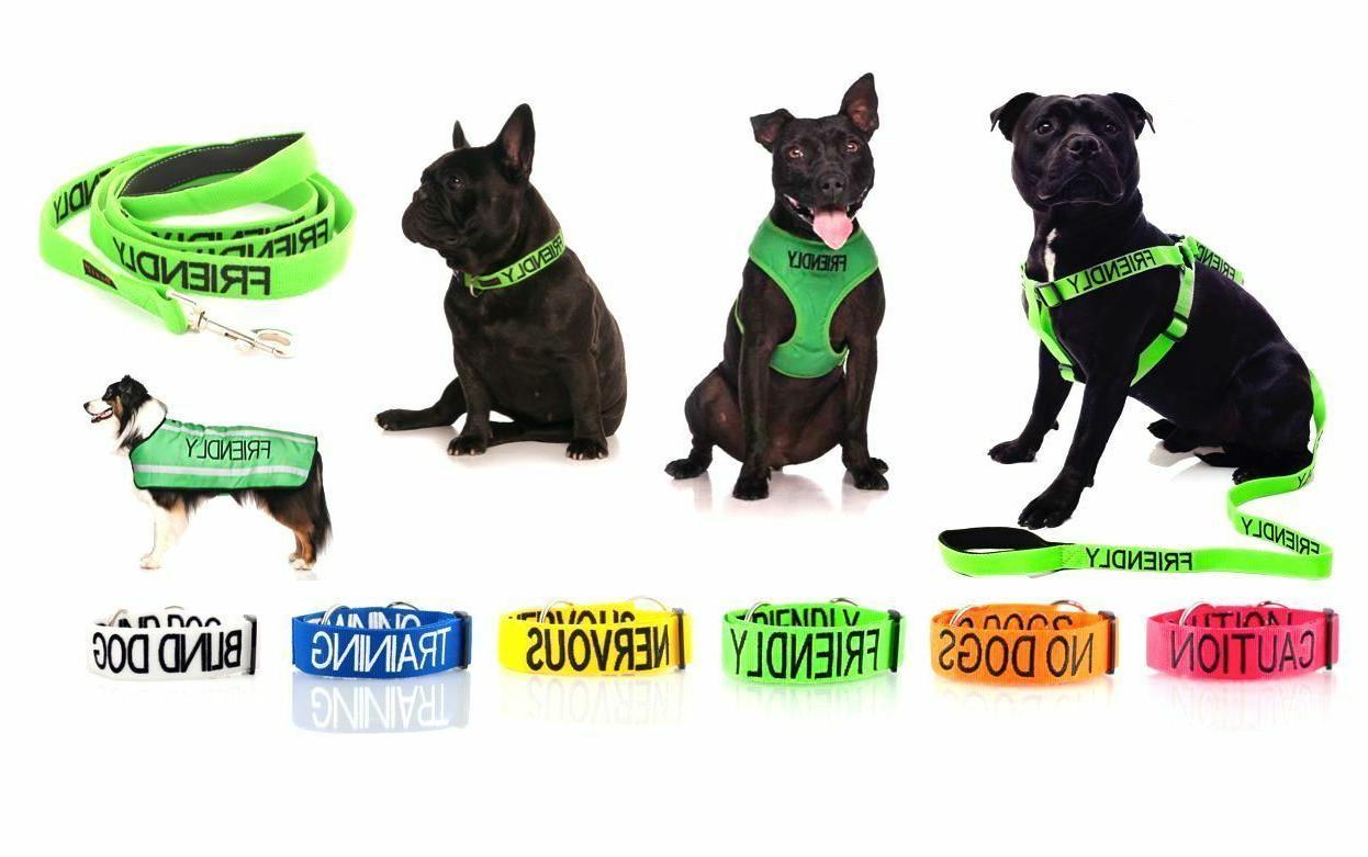 warning dog colour coded collar lead leash