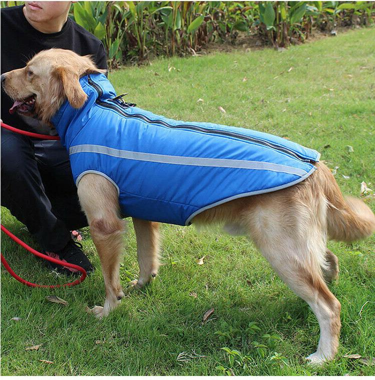 Waterproof Dog Coat Fleece Large
