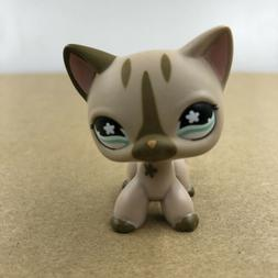 Littlest LPS #468 Pet Shop Brown Cat Kitty Doll Rare Collect