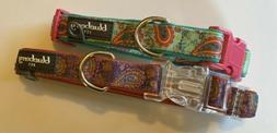 Lot of 2 NEW Blueberry Pet Paisley Padded Dog Collars  Small