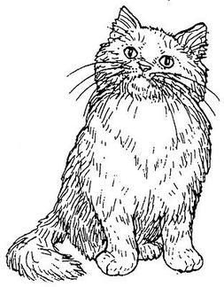 Mounted Rubber Stamps, Cat Stamps, Pets, Animals, Sm. Curiou