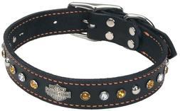 New Coastal Dog Puppy Collar Harley Davidson Motorcycles Lea