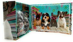 pet dogs puppies wearing glasses 500 pc