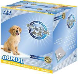 pet premium training pads for dogs