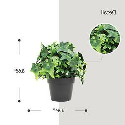 Pots Plants Mini Ivy Flower Green  Decoare For Home Indoor O