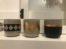 """Set of 3 Succulent Pots Small 3"""" Cement Planter Cactus Pots"""