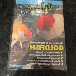 setting up and maintaining goldfish dvd pet