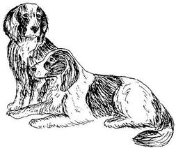 Unmounted Rubber Stamps, Dog Rubber Stamps, Canine Stamps, P
